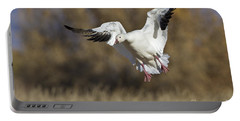 Portable Battery Charger featuring the photograph Incoming Snow Goose by Bryan Keil