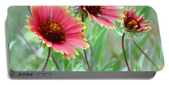 Indian Blanket Wildflowers Portable Battery Charger