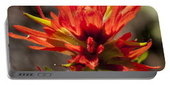 Indian Paintbrush Portable Battery Charger by Belinda Greb