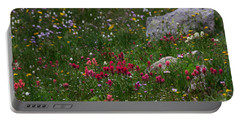 Indian Paintbrush II Portable Battery Charger