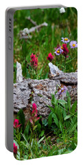 Portable Battery Charger featuring the photograph Indian Paintbrush by Ronda Kimbrow