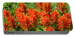 Indian Paintbrush Portable Battery Charger by Sue Smith