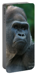 Portable Battery Charger featuring the photograph Indifference by Judy Whitton