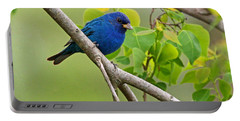 Blue Indigo Bunting Bird  Portable Battery Charger by Luana K Perez
