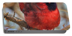 Inquisitive Cardinal Portable Battery Charger