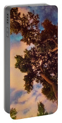 Inspired By Maxfield Parrish Portable Battery Charger