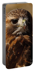 Red Tailed Hawk Portrait Portable Battery Charger