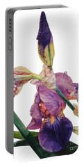 Watercolor Of A Tall Bearded Iris In A Color Rhapsody Portable Battery Charger
