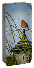 Irish Robin Perched On Garden Lamp Portable Battery Charger