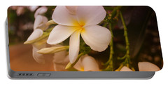 Portable Battery Charger featuring the photograph Isle De Java by Miguel Winterpacht