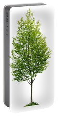 Isolated Young Tree Portable Battery Charger