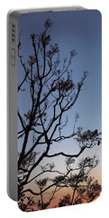 Portable Battery Charger featuring the photograph Jacaranda Sunset by Rona Black