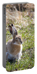 Portable Battery Charger featuring the photograph Jackrabbit by Michael Chatt