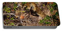 Jaguar Vs Caiman 2 Portable Battery Charger