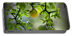 Japanese Orange Tree Portable Battery Charger