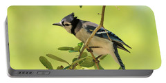 Jay In Nature Portable Battery Charger