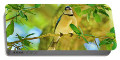 Jay In The Tree Portable Battery Charger