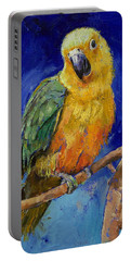 Jenday Conure Portable Battery Charger