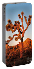 Portable Battery Charger featuring the photograph Joshua Tree At Sunset by Mae Wertz