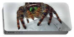 Jumper Spider 2 Portable Battery Charger