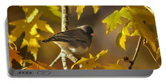 Junco In Morning Light Portable Battery Charger by Nava Thompson