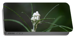 Portable Battery Charger featuring the photograph Just Budding by Denyse Duhaime