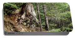 Just Hanging On Old Growth Forest Stump Portable Battery Charger