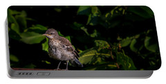 Just Out Of The Nest Portable Battery Charger