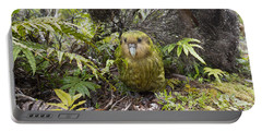 Kakapo Male In Forest Codfish Island Portable Battery Charger