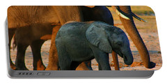 Portable Battery Charger featuring the photograph Kalahari Elephants by Amanda Stadther