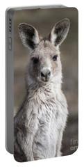 Kangaroo Portable Battery Charger