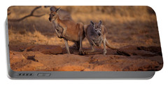 Kangaroos In The Desert Portable Battery Charger