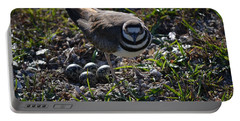 Killdeer Guarding Her Eggs Portable Battery Charger