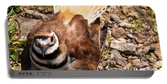 Killdeer On Its Nest Portable Battery Charger by Chris Flees