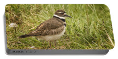 Killdeer Portable Battery Charger by Priscilla Burgers
