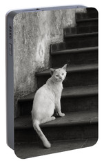 Portable Battery Charger featuring the photograph Kimba by Laura Melis