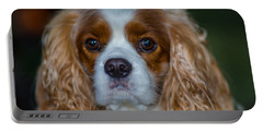 King Charles Portable Battery Charger