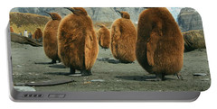 King Penguin Chicks Portable Battery Charger by Amanda Stadther