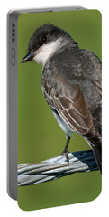 Kingbird On A Wire Portable Battery Charger