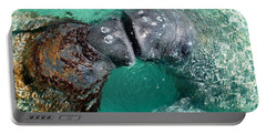 Kissing Manatees Near Harbour Island Portable Battery Charger