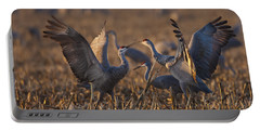 Kissing Sandhills Portable Battery Charger