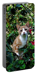 Kitten Portable Battery Charger by Pamela Walton