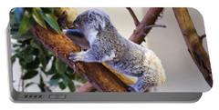 Koala Climbing Tree Portable Battery Charger
