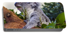 Koala Eating In A Tree Portable Battery Charger