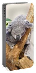 Koala Sleeping  Portable Battery Charger