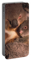 Koala With Young Portable Battery Charger