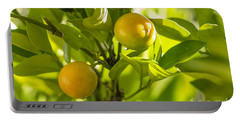 Kumquats Portable Battery Charger