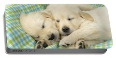 Labs Sleeping On A Blanket Portable Battery Charger