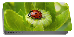 Lady Bug In The Garden Portable Battery Charger