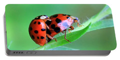 Ladybug And Gentlemanbug Portable Battery Charger